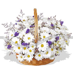 Flawless Beauty - basket with spray chrysanthemums and statice